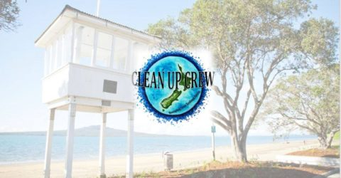 Narrowneck Beach Cleanup